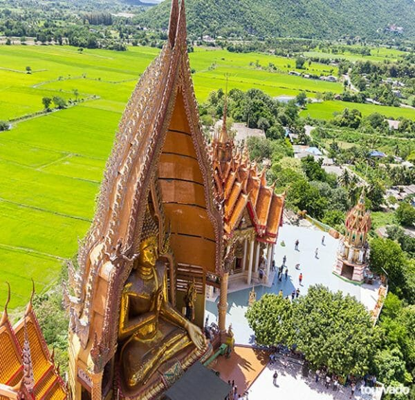 Kanchanaburi Bridge Over River Kwai and Tiger Temple Tour