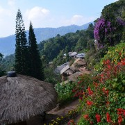 Doi Suthep Tour, Meo Hill Tribe Village, Phuping Palace (6)