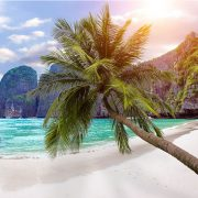 Phi Phi Islands Tour by Speedboat from Phuket (3)